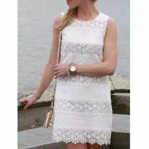 J. Crew White Scalloped Lace Stripe Shift Dress